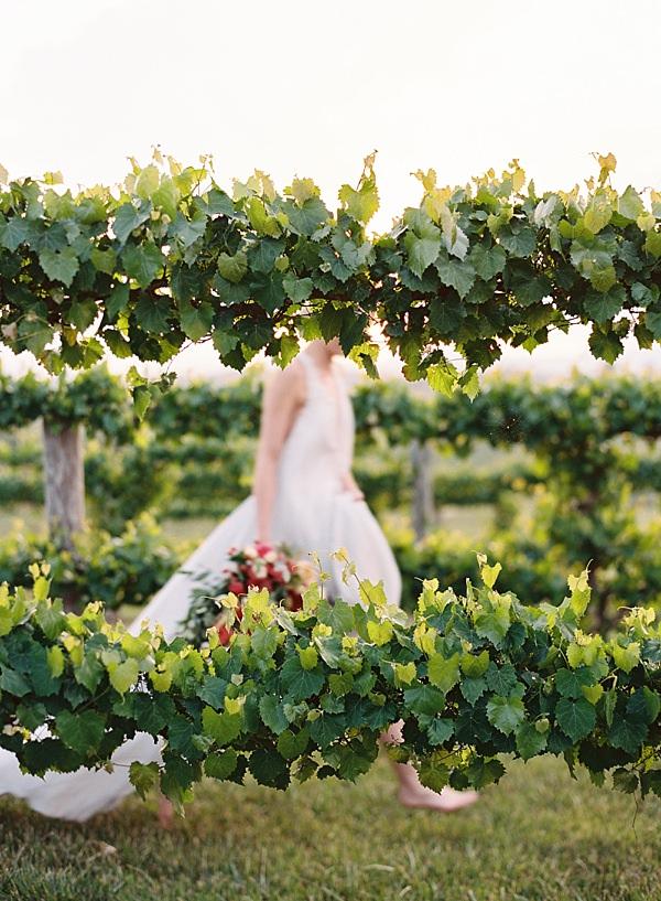 bride running through vineyard
