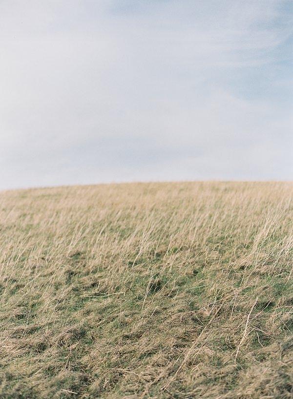 landscape on film