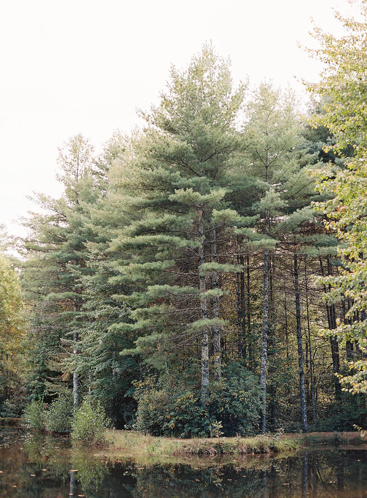 woodland wedding location